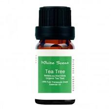 Tea Tree  Nature Essential Oil